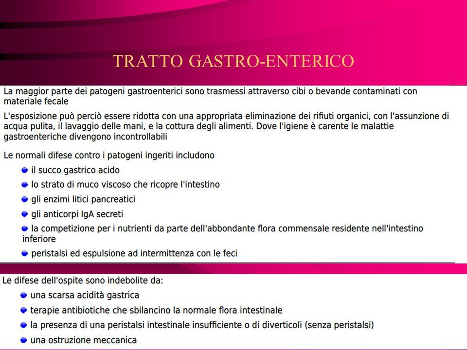 TRATTO GASTRO-ENTERICO