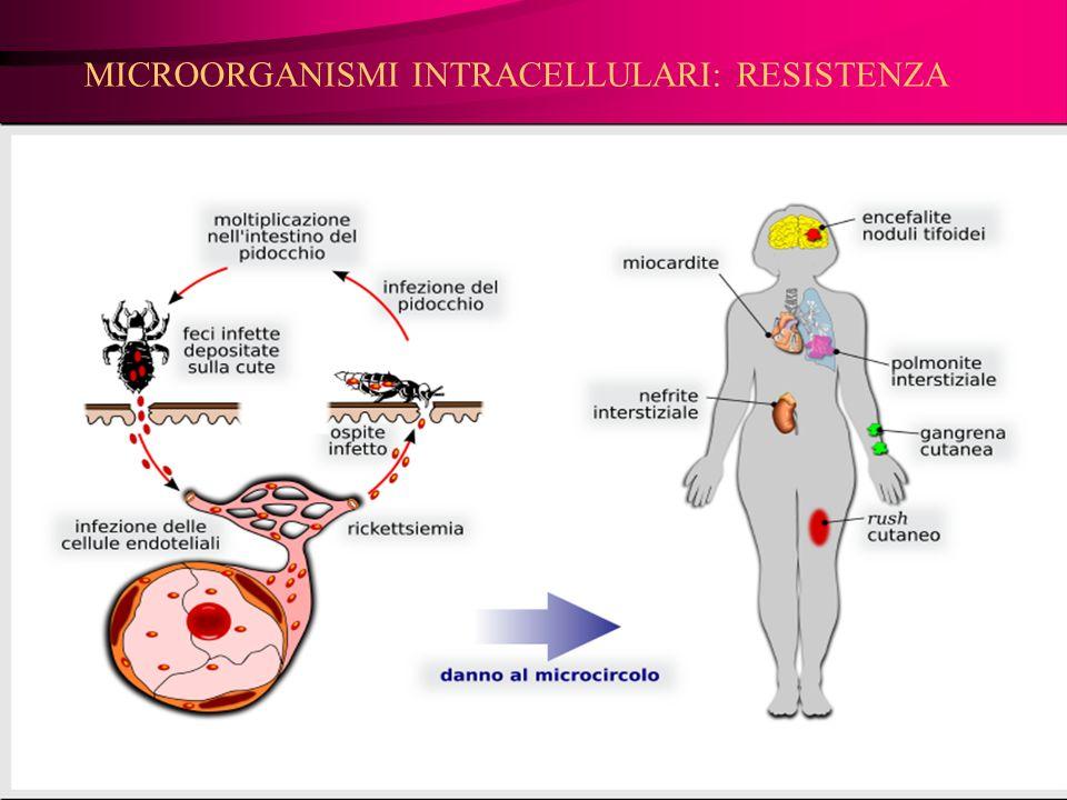 MICROORGANISMI INTRACELLULARI: RESISTENZA