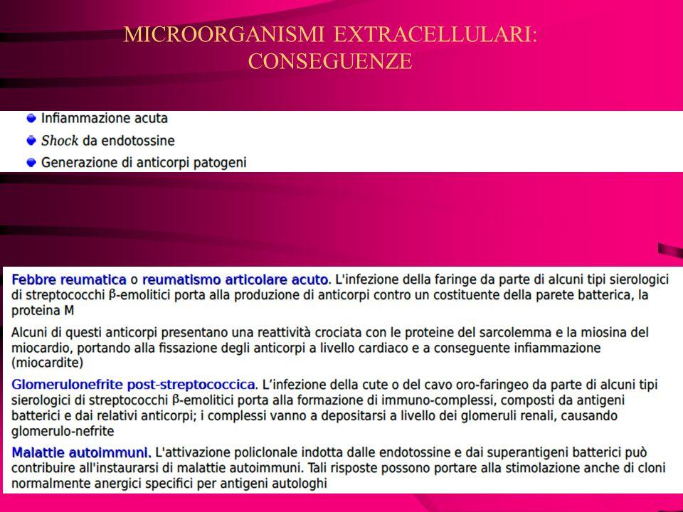 MICROORGANISMI EXTRACELLULARI: CONSEGUENZE