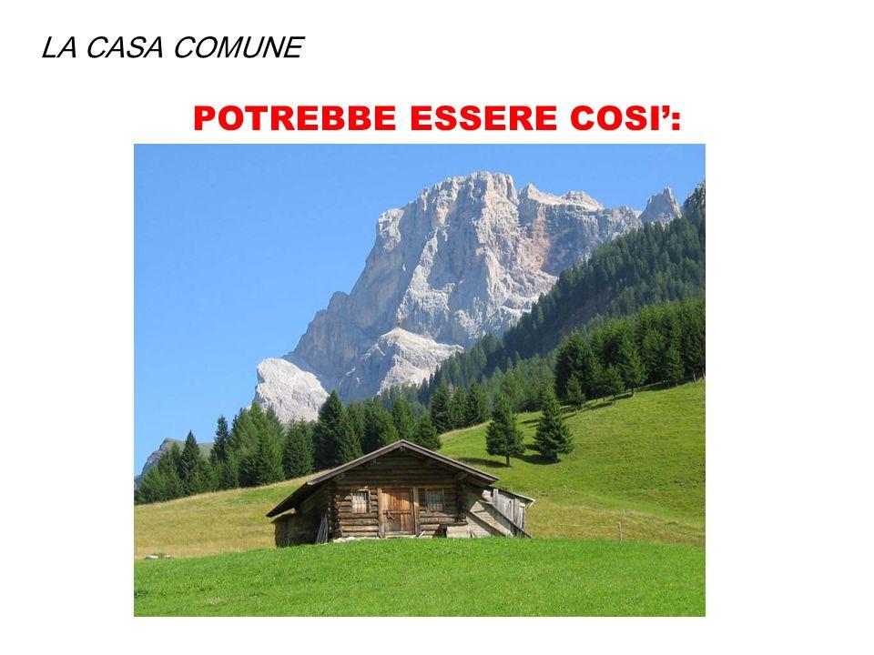 POTREBBE ESSERE COSI':