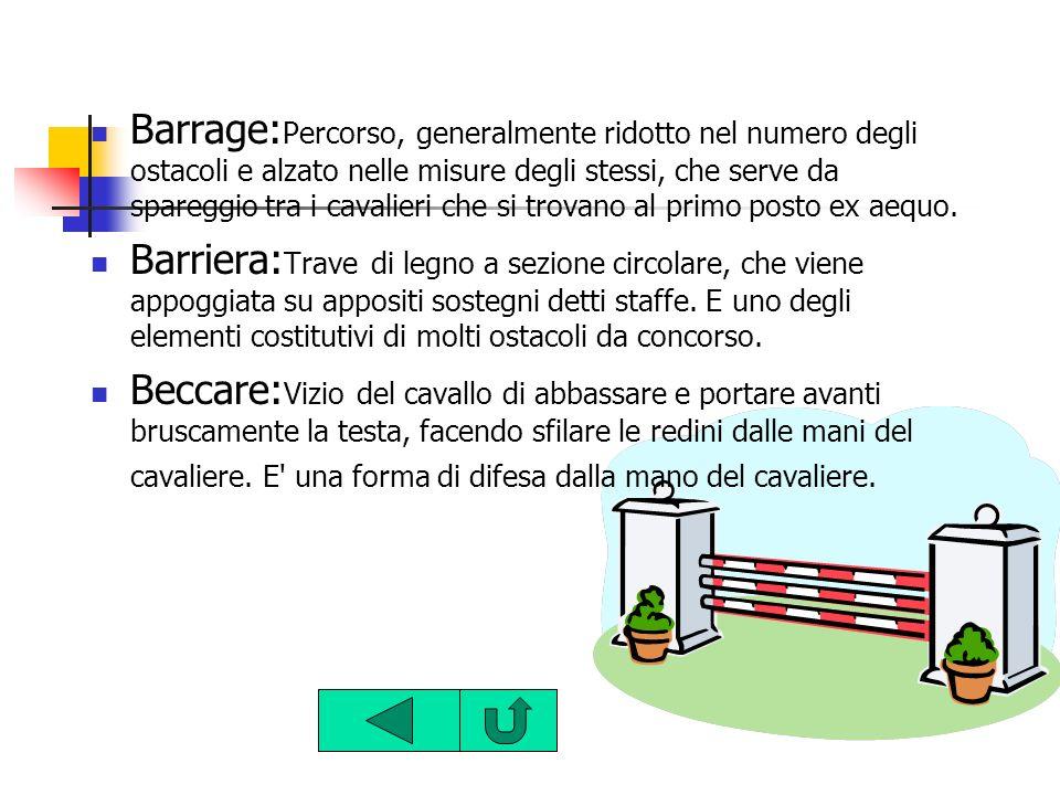 Barrage:Percorso, generalmente ridotto nel numero degli ostacoli e alzato nelle misure degli stessi, che serve da spareggio tra i cavalieri che si trovano al primo posto ex aequo.