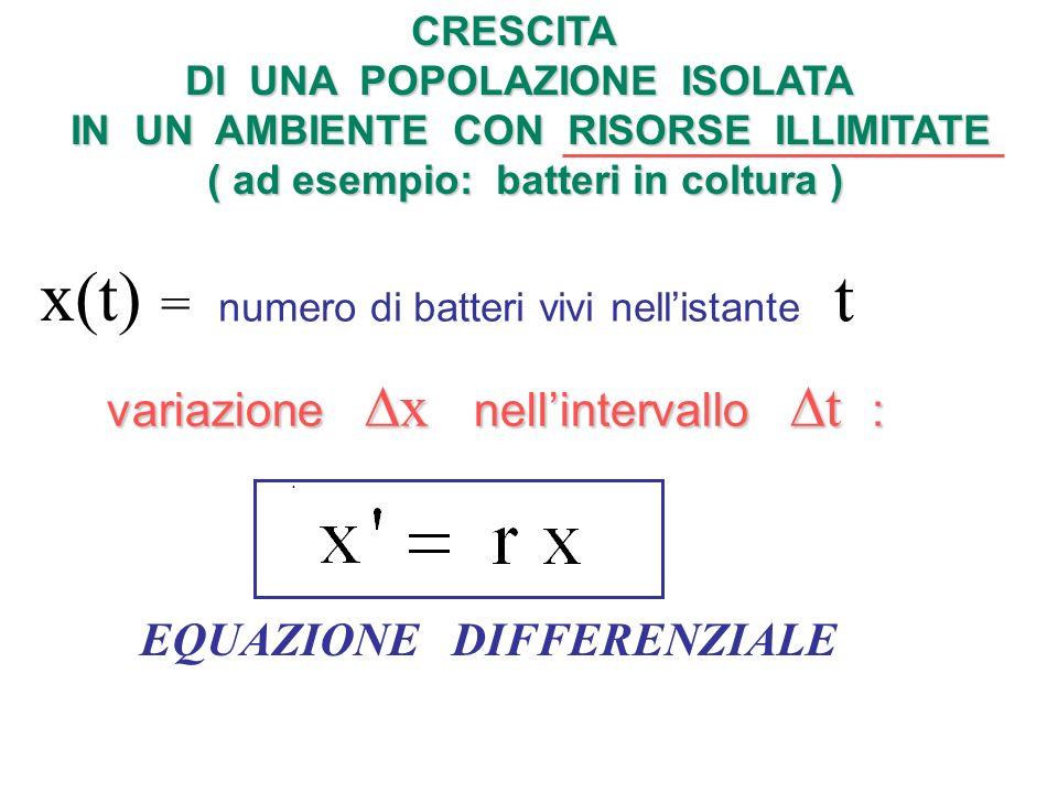 Equazione differenziale