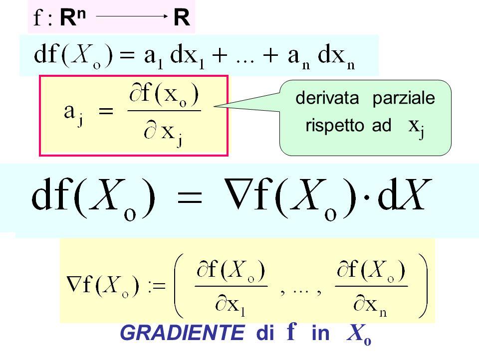 derivata parziale rispetto ad xj