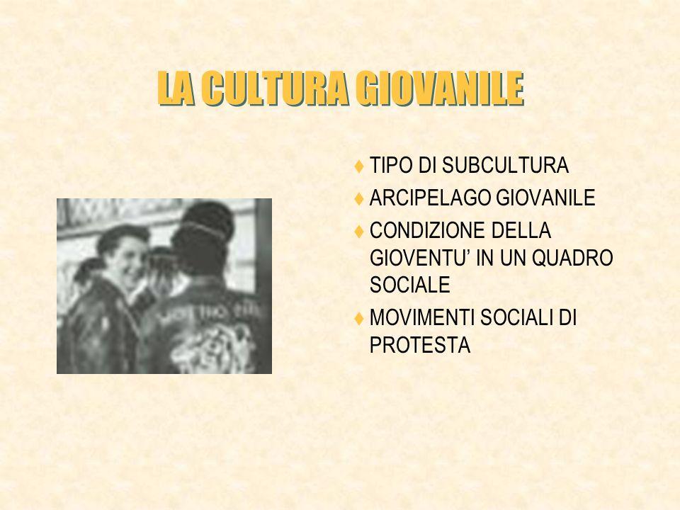 LA CULTURA GIOVANILE TIPO DI SUBCULTURA ARCIPELAGO GIOVANILE