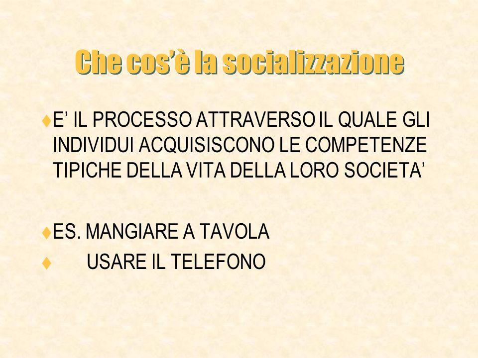 Che cos'è la socializzazione