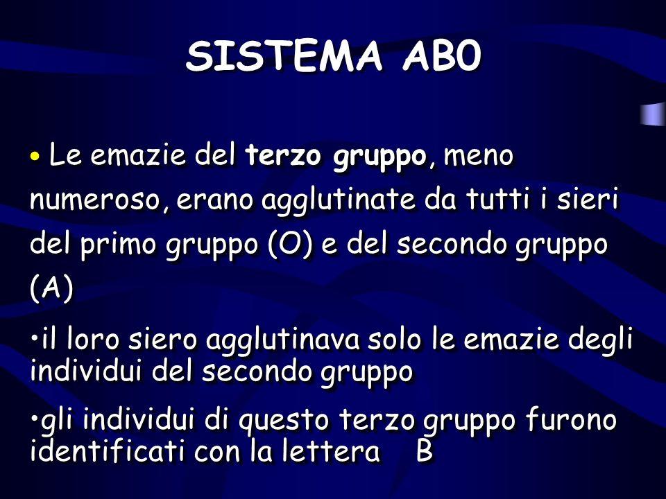 SISTEMA AB0 Le emazie del terzo gruppo, meno numeroso, erano agglutinate da tutti i sieri del primo gruppo (O) e del secondo gruppo (A)