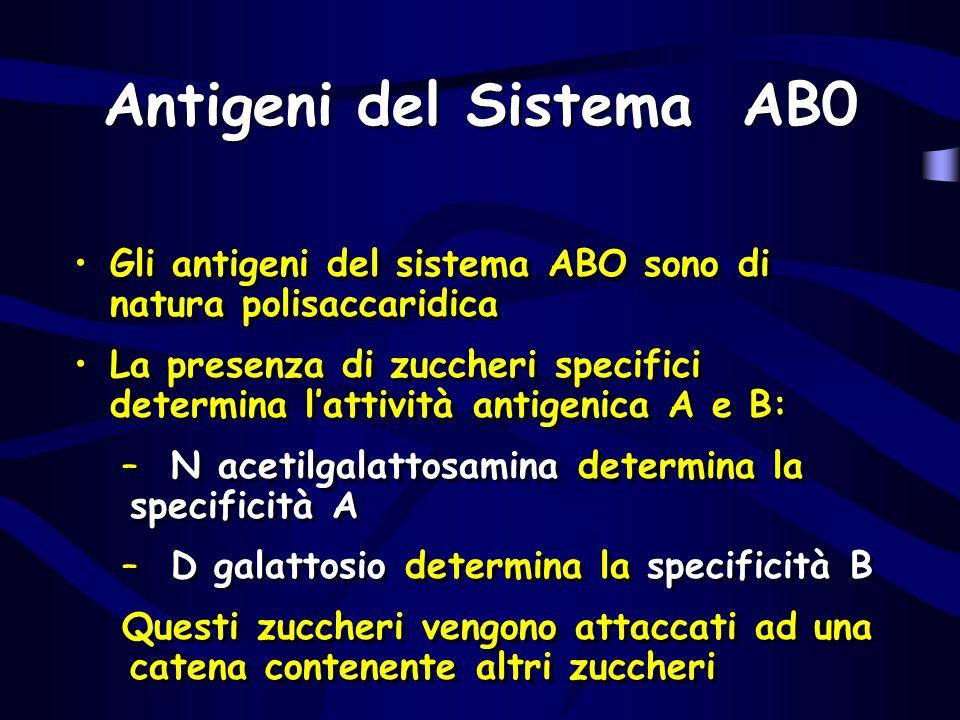 Antigeni del Sistema AB0