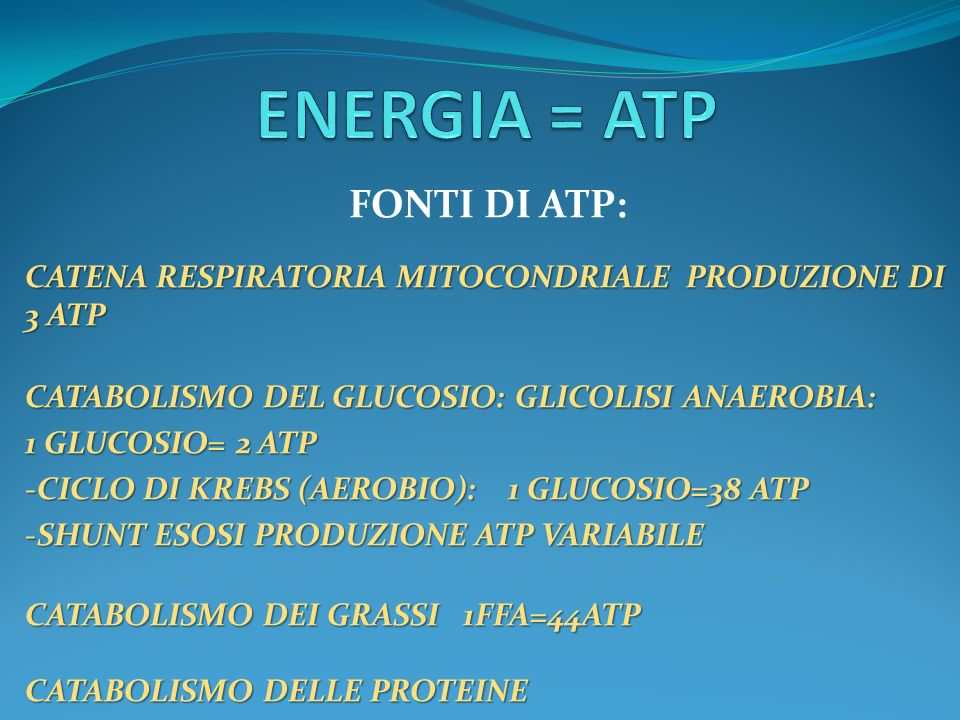 ENERGIA = ATP FONTI DI ATP: