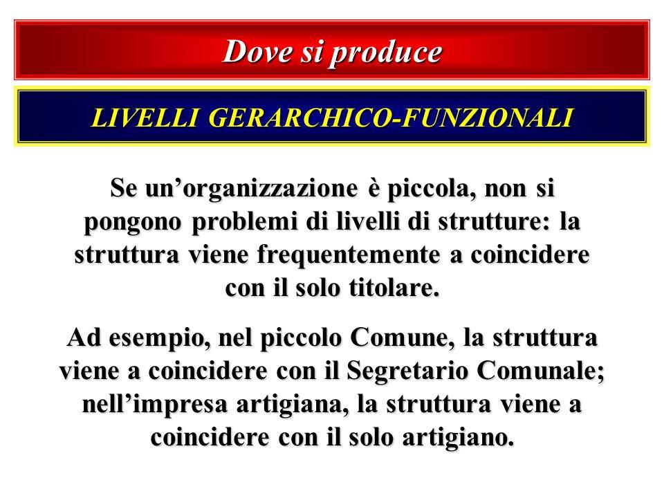 LIVELLI GERARCHICO-FUNZIONALI