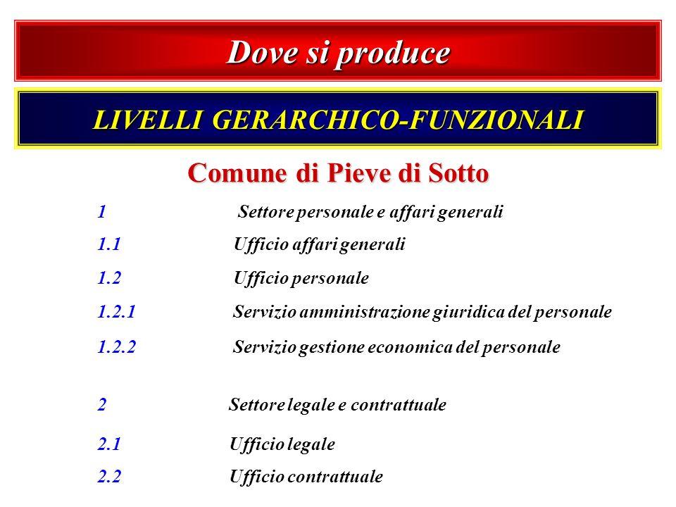 LIVELLI GERARCHICO-FUNZIONALI Comune di Pieve di Sotto