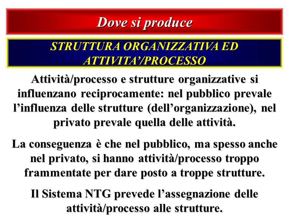 STRUTTURA ORGANIZZATIVA ED ATTIVITA'/PROCESSO