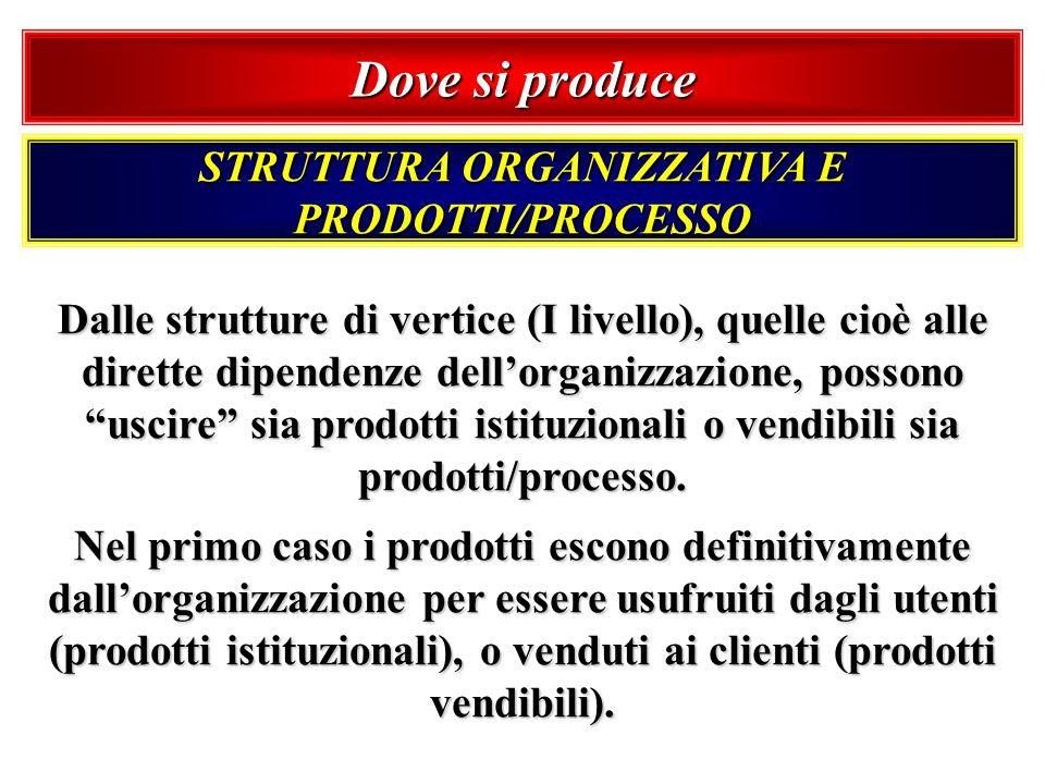 STRUTTURA ORGANIZZATIVA E PRODOTTI/PROCESSO