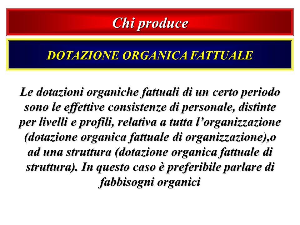 DOTAZIONE ORGANICA FATTUALE