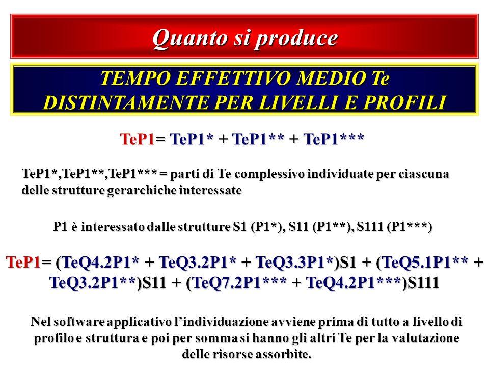 Quanto si produce TEMPO EFFETTIVO MEDIO Te DISTINTAMENTE PER LIVELLI E PROFILI. TeP1= TeP1* + TeP1** + TeP1***