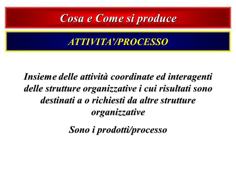 Sono i prodotti/processo