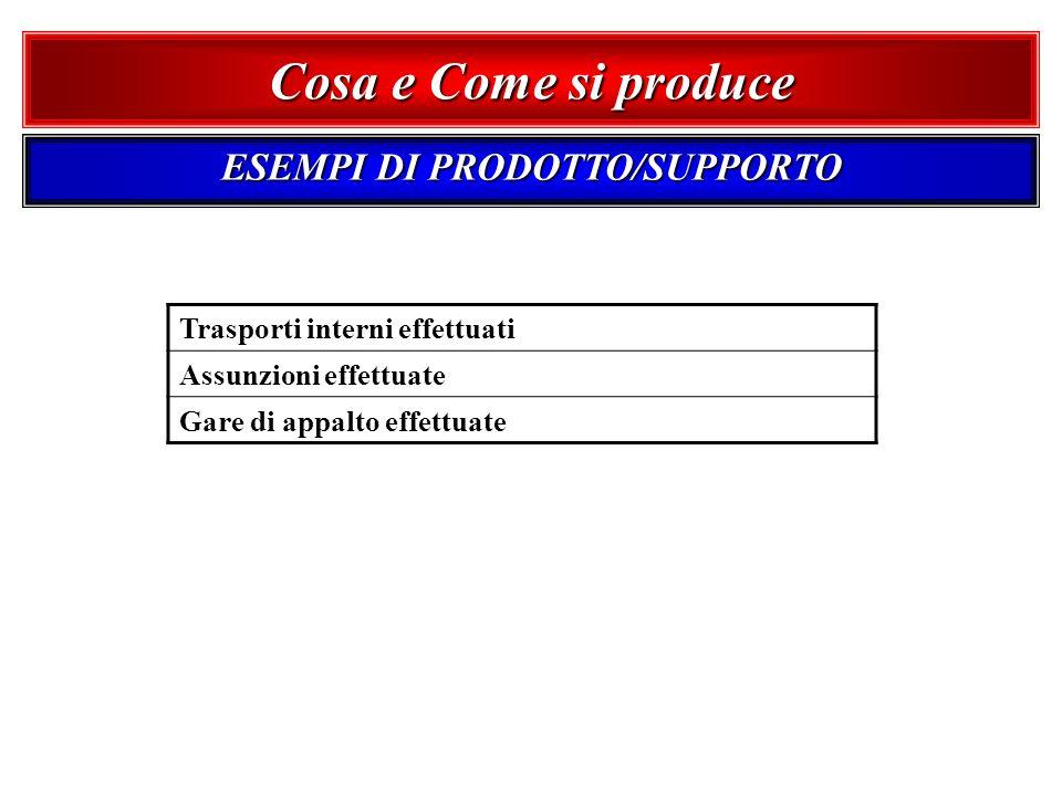 ESEMPI DI PRODOTTO/SUPPORTO
