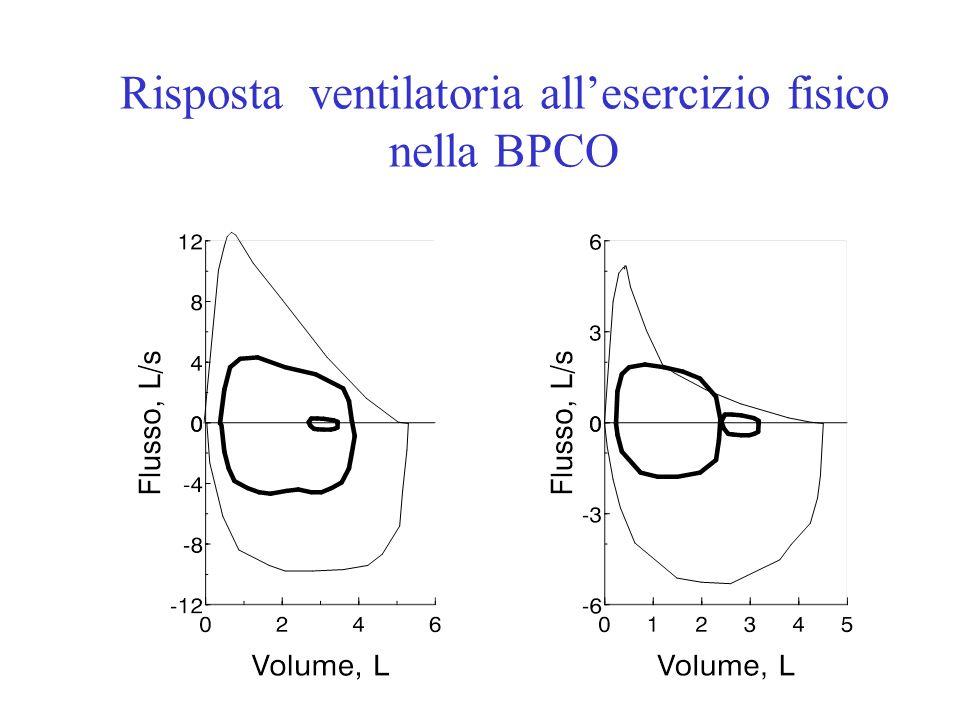 Risposta ventilatoria all'esercizio fisico nella BPCO