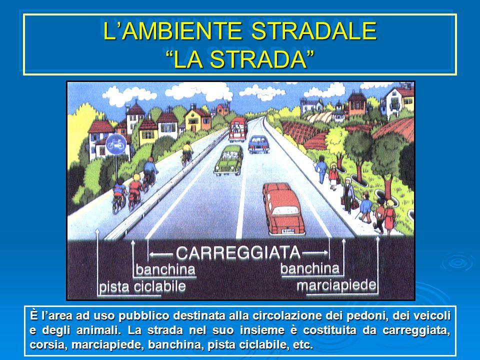 L'AMBIENTE STRADALE LA STRADA