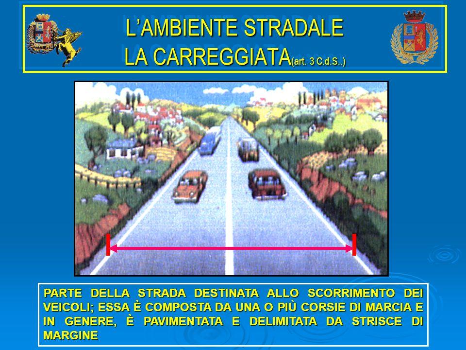 L'AMBIENTE STRADALE LA CARREGGIATA(art. 3 C.d.S..)