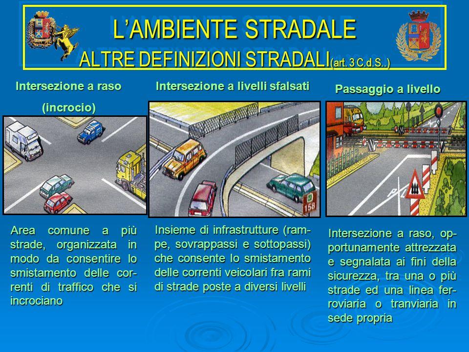 L'AMBIENTE STRADALE ALTRE DEFINIZIONI STRADALI(art. 3 C.d.S..)