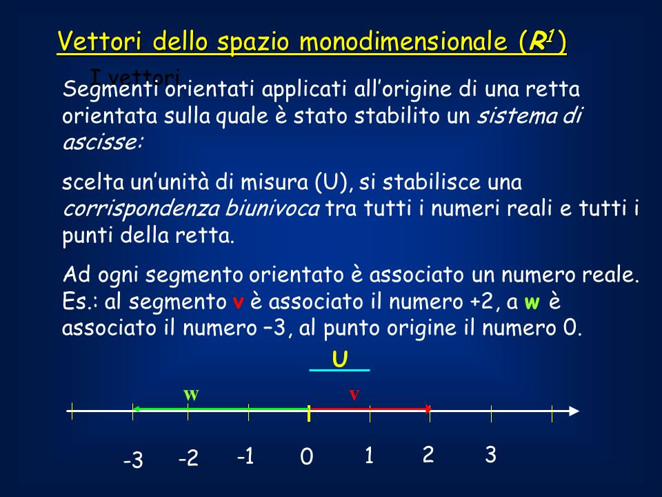 Vettori dello spazio monodimensionale (R1 )