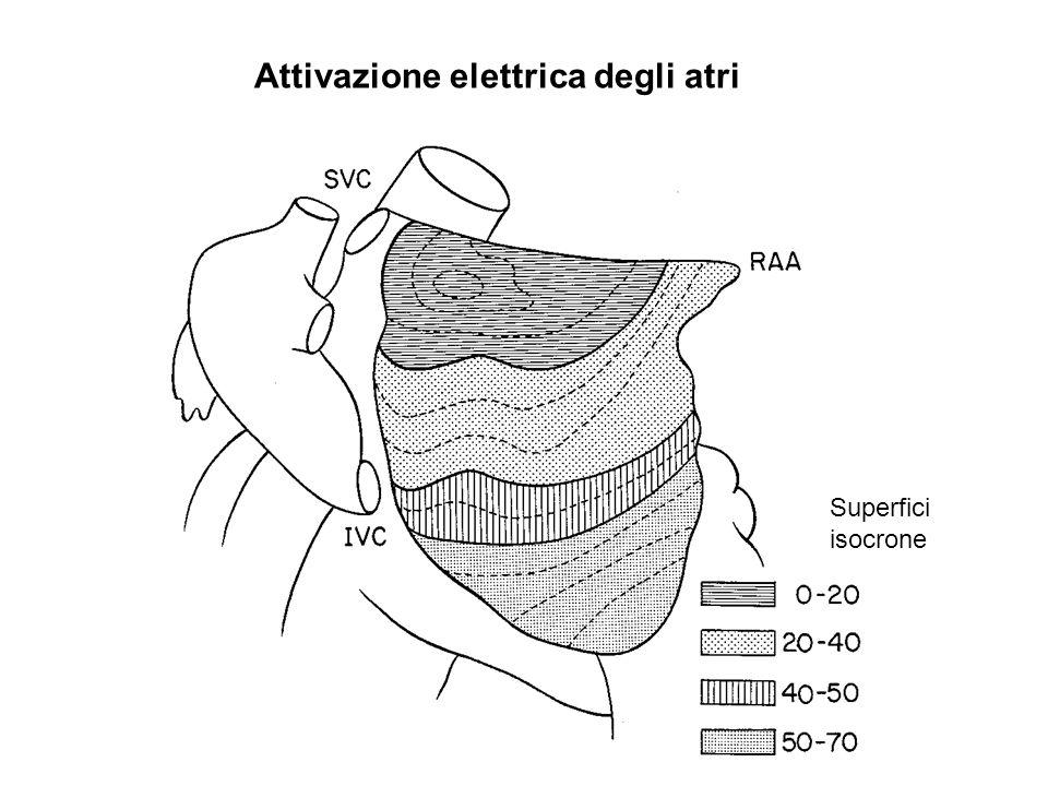 Attivazione elettrica degli atri