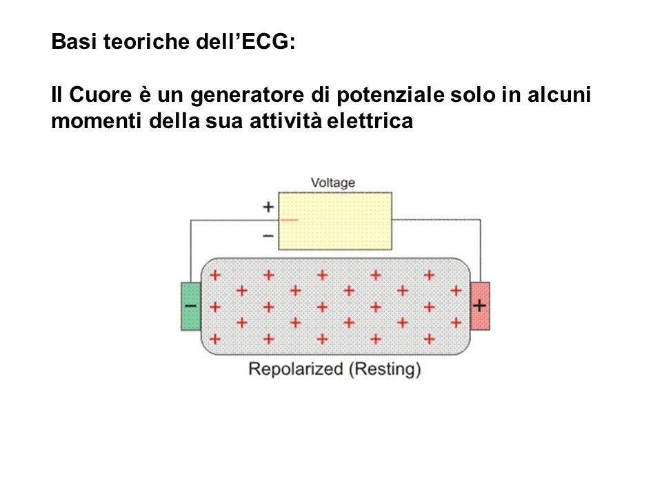 Basi teoriche dell'ECG: