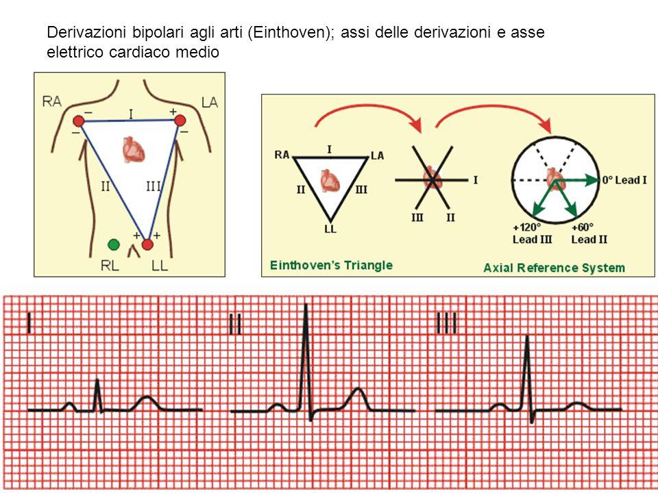 Derivazioni bipolari agli arti (Einthoven); assi delle derivazioni e asse elettrico cardiaco medio