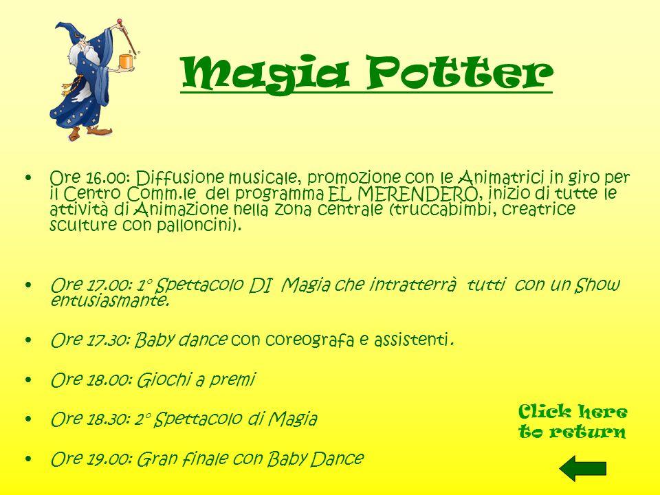 Magia Potter