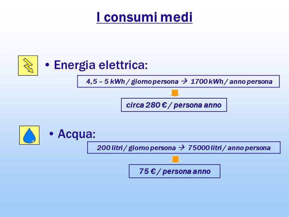 I consumi medi Energia elettrica: Acqua: circa 280 € / persona anno