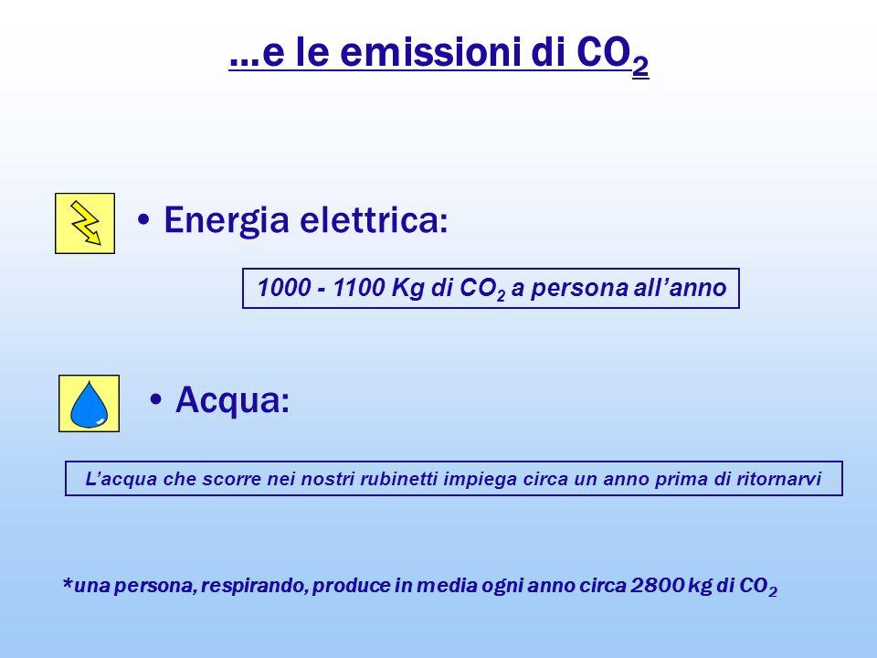 1000 - 1100 Kg di CO2 a persona all'anno