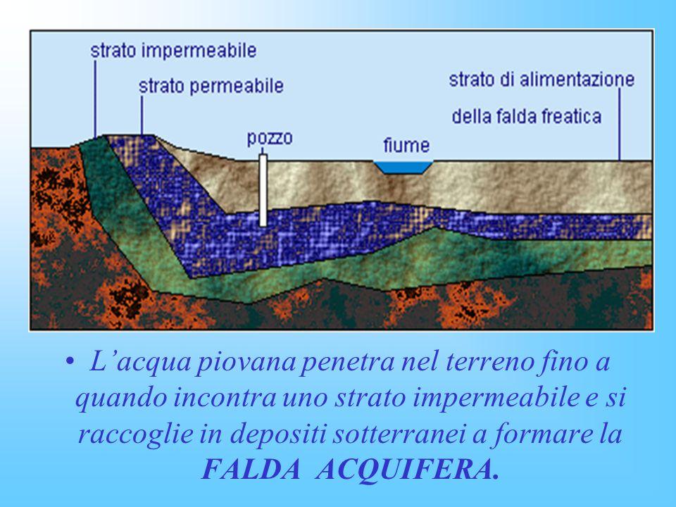 L'acqua piovana penetra nel terreno fino a quando incontra uno strato impermeabile e si raccoglie in depositi sotterranei a formare la FALDA ACQUIFERA.
