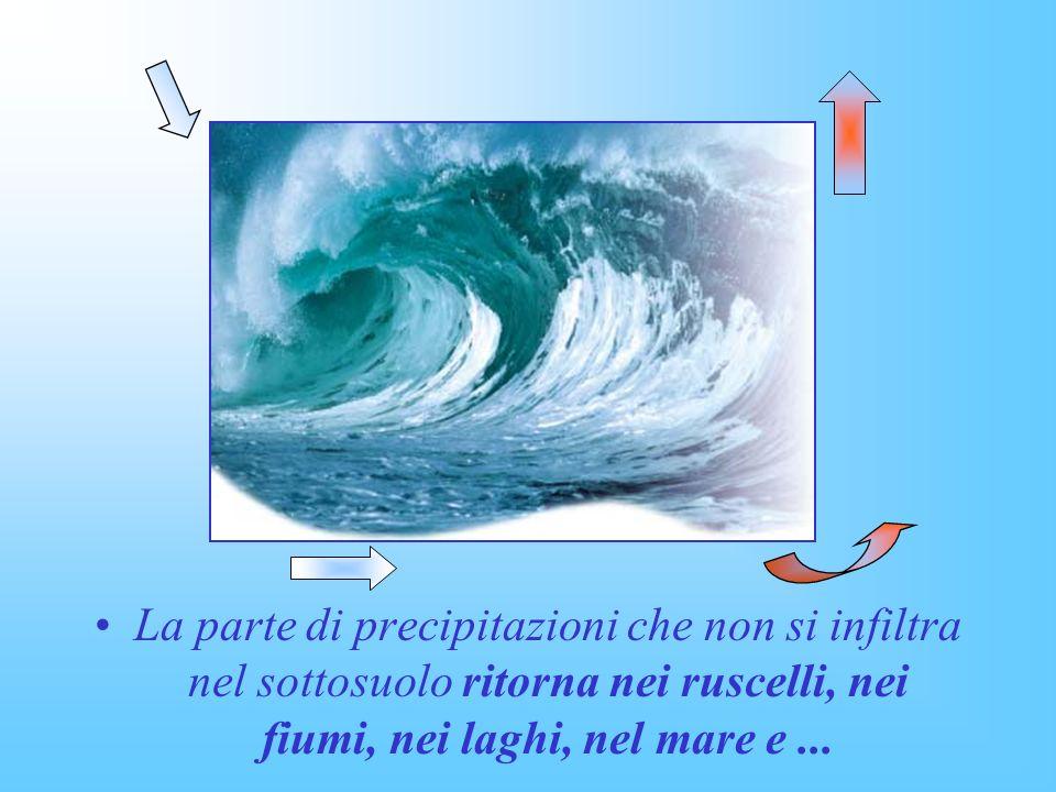 La parte di precipitazioni che non si infiltra nel sottosuolo ritorna nei ruscelli, nei fiumi, nei laghi, nel mare e ...