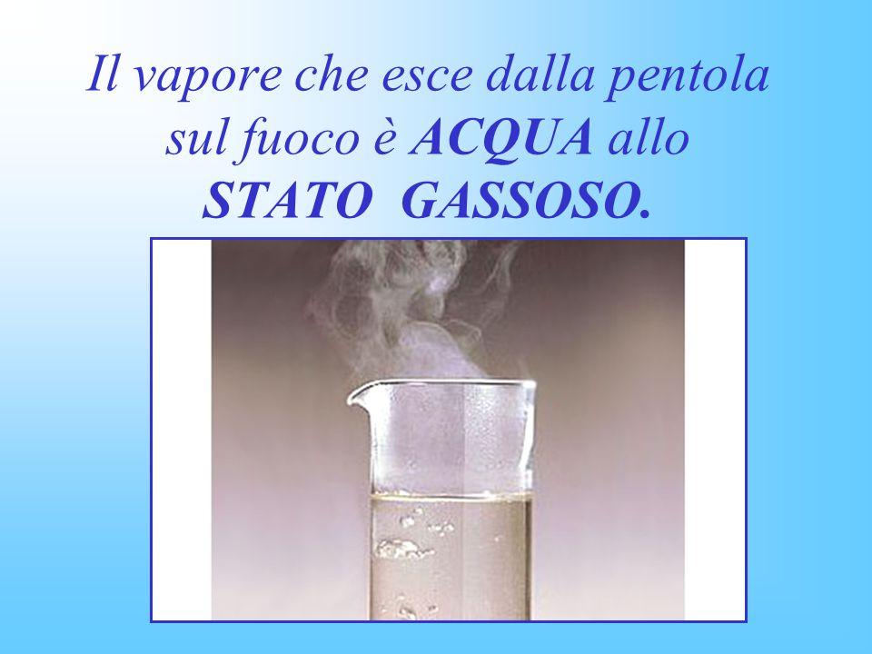 Il vapore che esce dalla pentola sul fuoco è ACQUA allo STATO GASSOSO.
