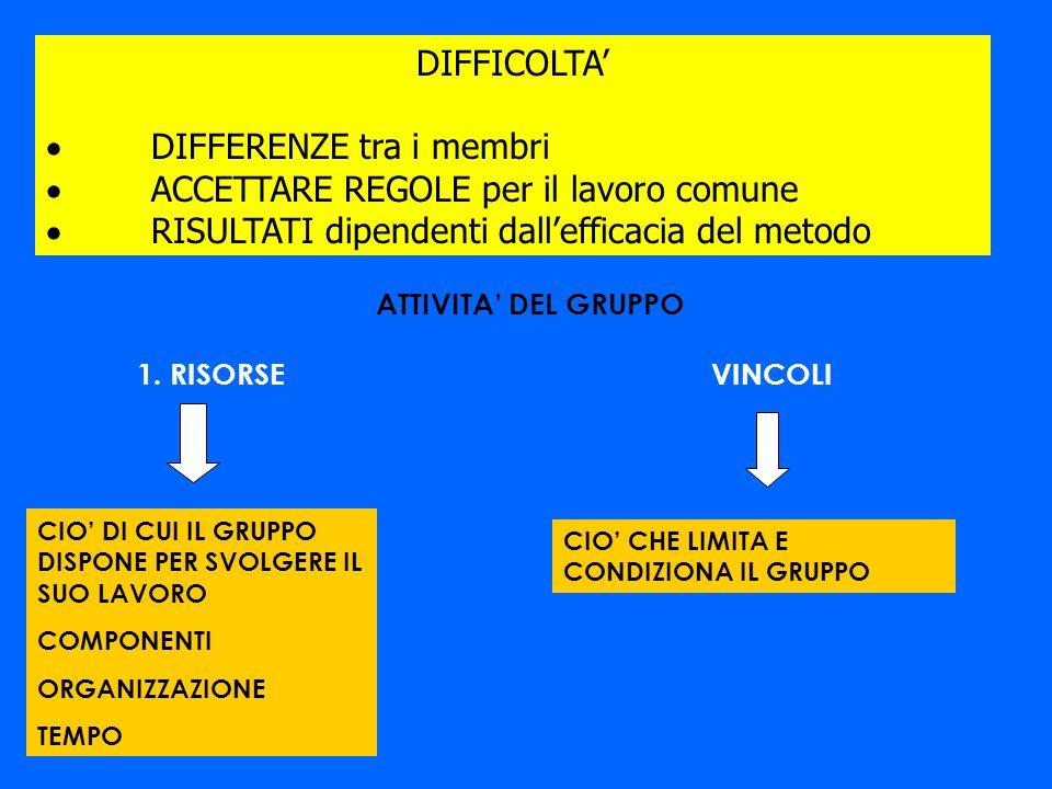 · DIFFERENZE tra i membri · ACCETTARE REGOLE per il lavoro comune