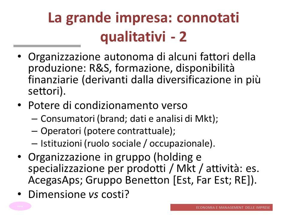 La grande impresa: connotati qualitativi - 2