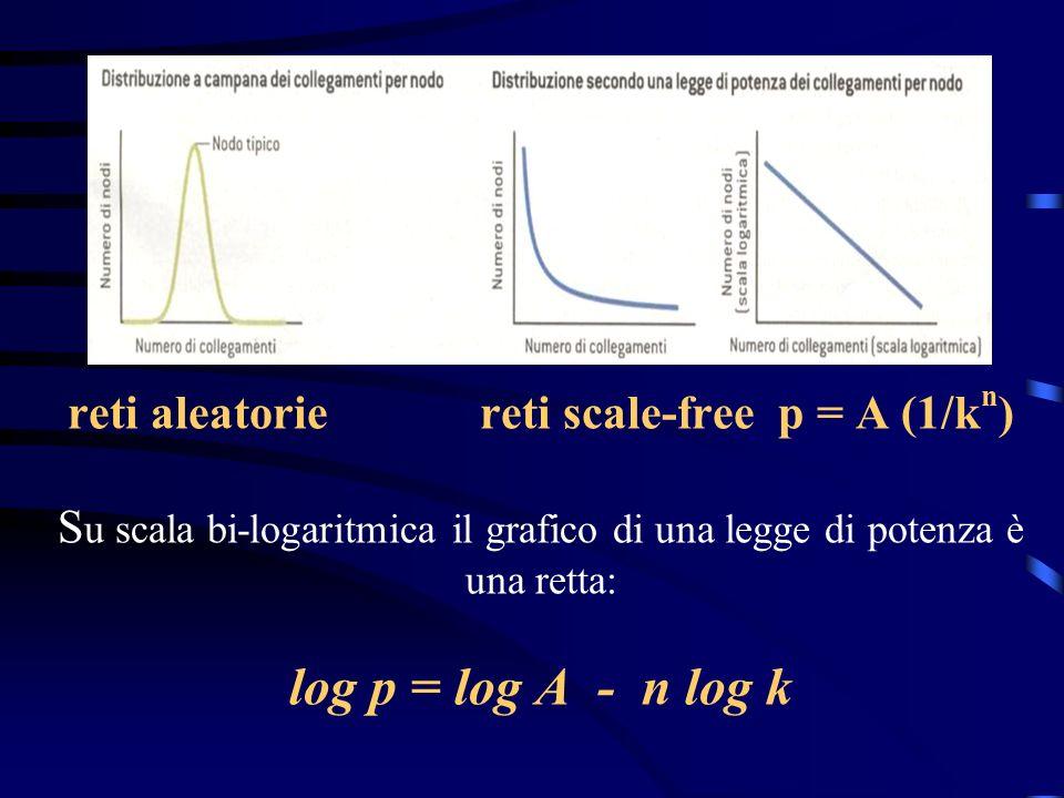 reti aleatorie reti scale-free p = A (1/kn) Su scala bi-logaritmica il grafico di una legge di potenza è una retta: log p = log A - n log k