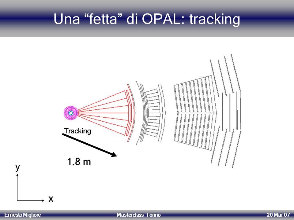Una fetta di OPAL: tracking