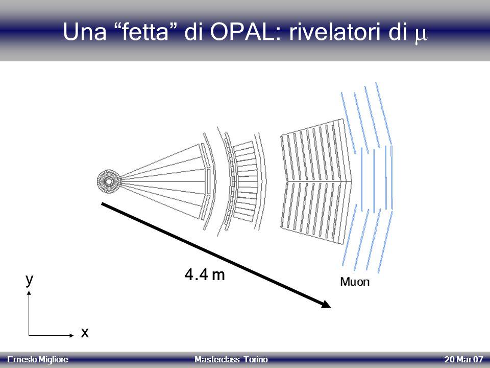 Una fetta di OPAL: rivelatori di 