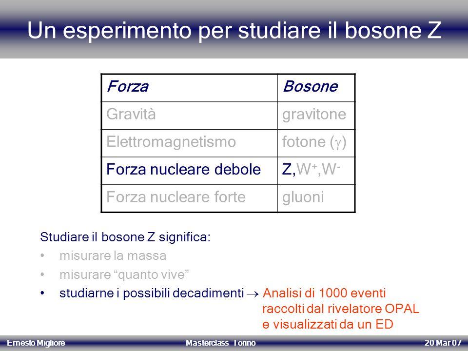Un esperimento per studiare il bosone Z