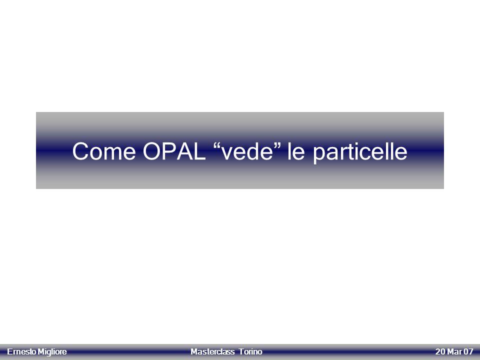 Come OPAL vede le particelle