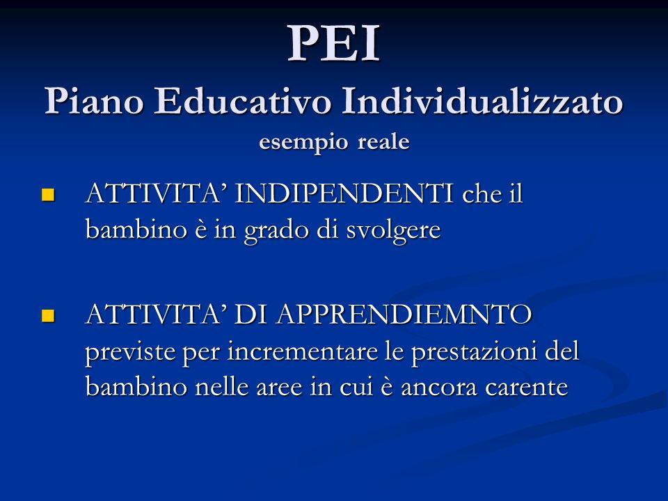 PEI Piano Educativo Individualizzato esempio reale