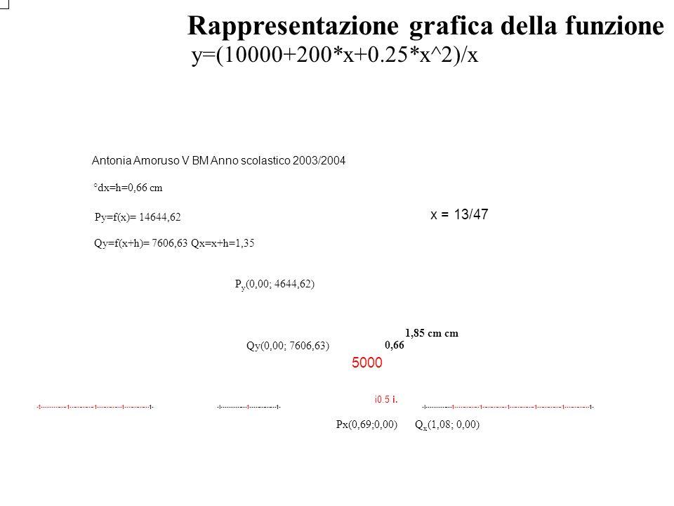 Rappresentazione grafica della funzione del costo unitario