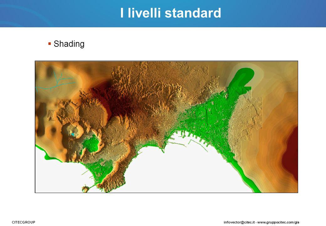 I livelli standard Shading CITECGROUP