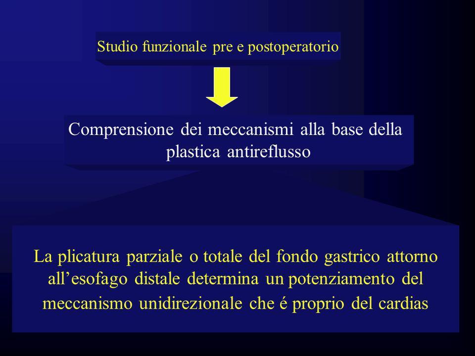 Comprensione dei meccanismi alla base della plastica antireflusso