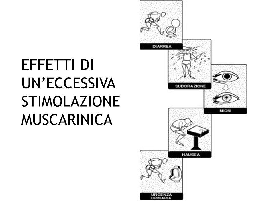 EFFETTI DI UN'ECCESSIVA STIMOLAZIONE MUSCARINICA