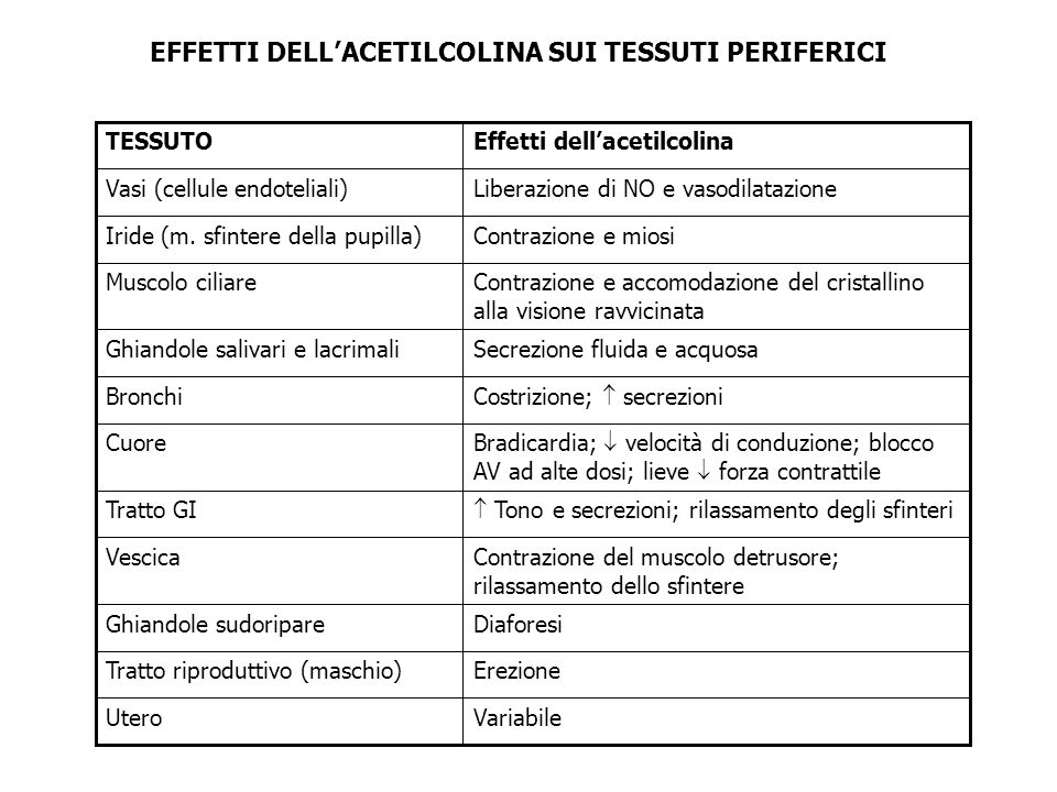 EFFETTI DELL'ACETILCOLINA SUI TESSUTI PERIFERICI