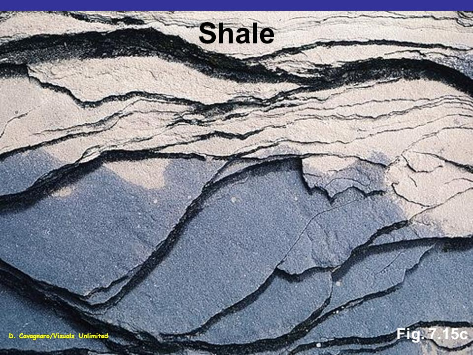 Shale Fig. 7.15c D. Cavagnaro/Visuals Unlimited