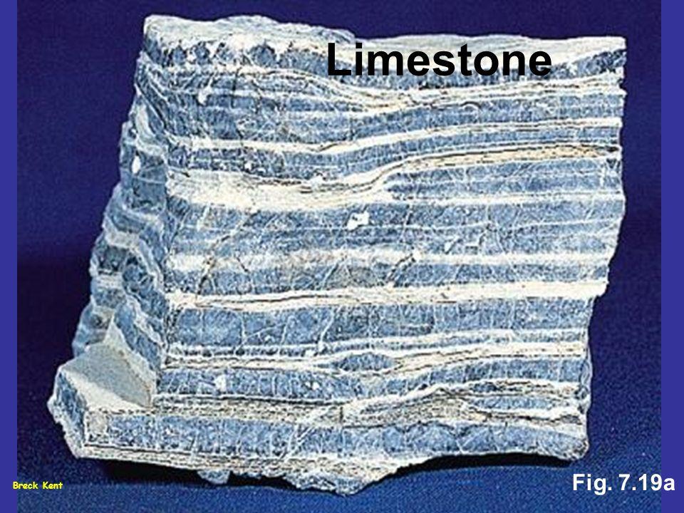 Limestone Fig. 7.19a Breck Kent