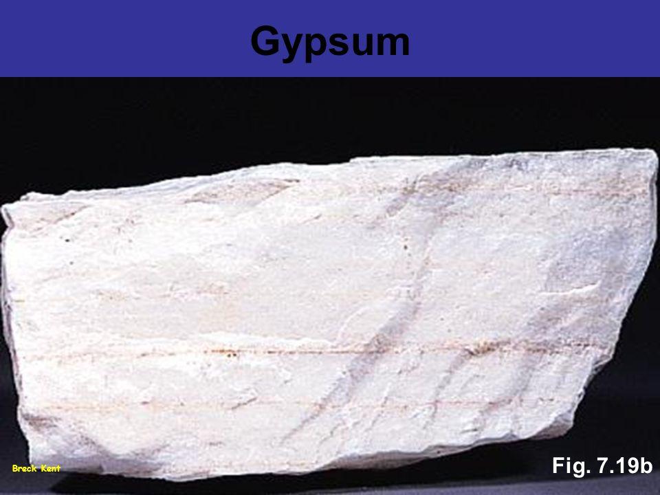 Gypsum Fig. 7.19b Breck Kent